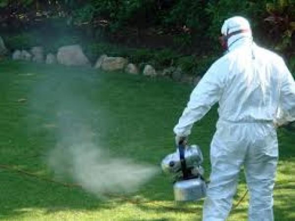 Започна пръскането срещу насекоми и гризачи в община Панагюрище