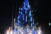 Коледната елха в Панагюрище ще грейне на 11 декември