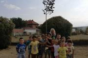 Община Панагюрище отново дари живи дръвчета на всички учебни заведения за новата 2020-2021 учебна година